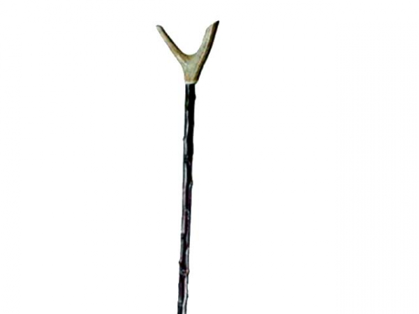 Antler thumbstick on blackthorn shaft in the group Other products / Walking sticks at PAW of Sweden AB (2408)